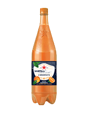 Sanpellegrino Aranciata in pet 125 cl